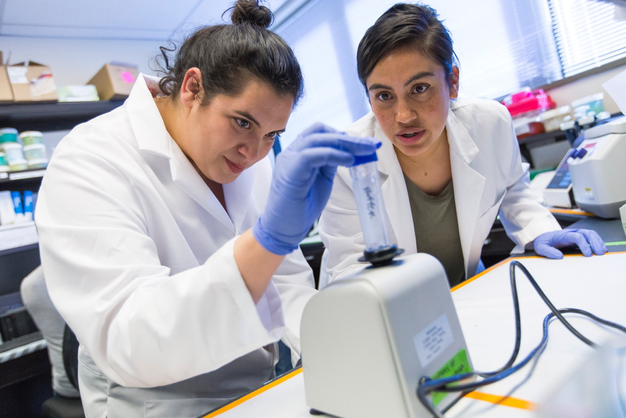 Two students in the lab